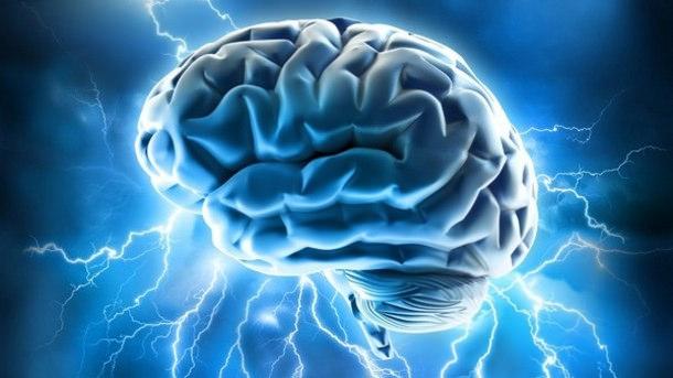 Brain bias.