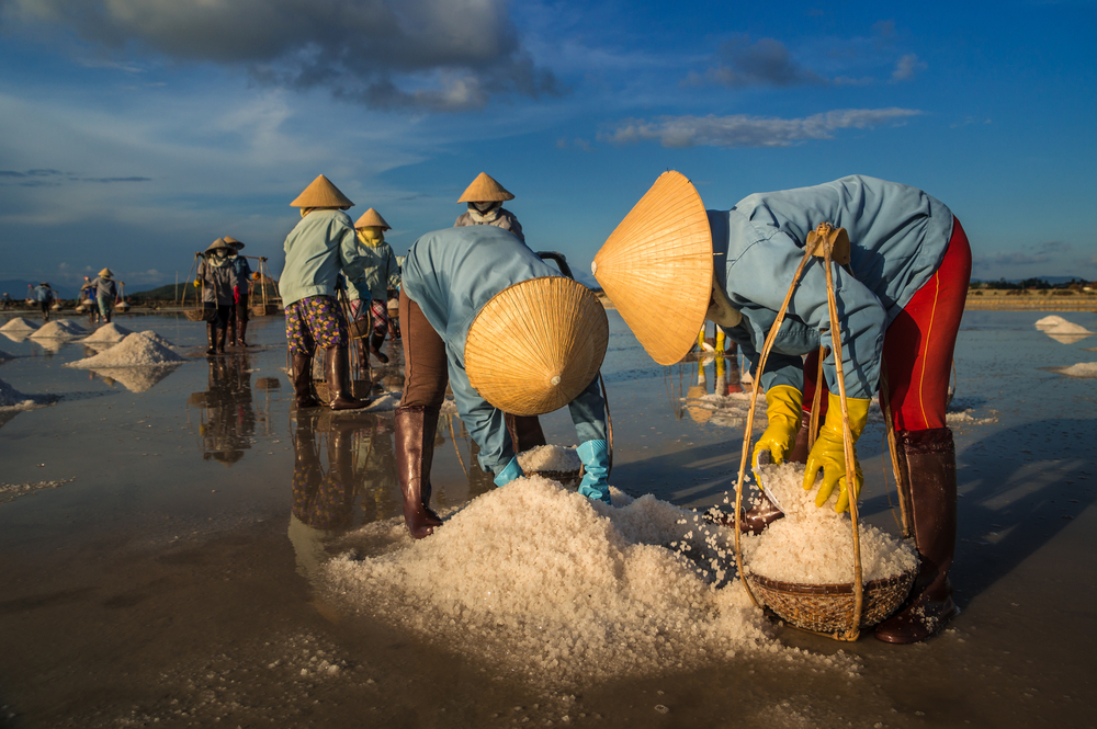 Nha Trang, Vietnam. Women carry salt from salt farm to factory. Photo: Shutterstock