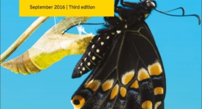 EY_Annual-Reporting_2015
