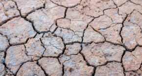 Environmental concern dominate US shareholder proposals