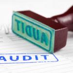 Audit stamp, audit quality, auditor, Brydon review