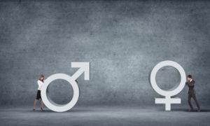 gender diversity, gender quotas, gender equality