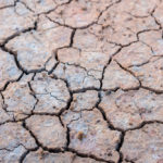 climate change, environment, cracked earth
