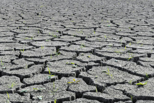 climate change, drought