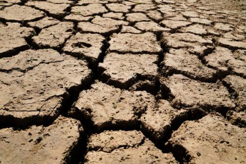 global warming, carbon emissions