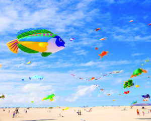 kites, beach