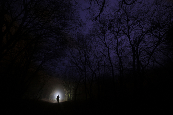 man with a torch in a dark forest