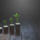 Piles of coins with plants in ascending order